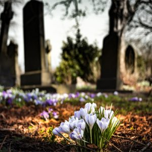 Exhumation services Cape Town